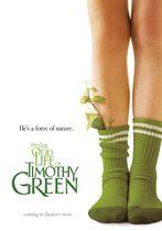 Viața stranie a lui Timothy Green