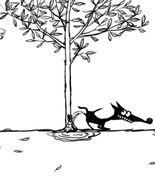 Cățel negru pișăcios