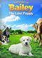 Film Adventures of Bailey: The Lost Puppy