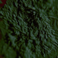 Iron Invader/Golemul de metal