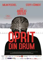 Oprit din drum