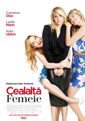 Poster The Other Woman