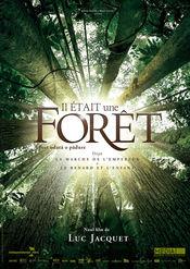 Poster Il était une forêt