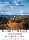 Sarea pământului
