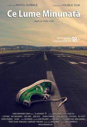 Poster Ce lume minunată