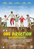 One Direction: Povestea din culise