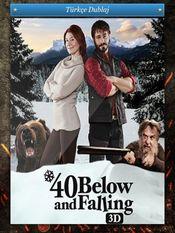 Poster 40 Below and Falling 3D
