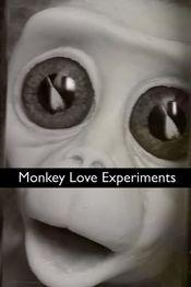 Poster Monkey Love Experiments