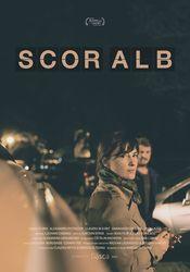 Poster Scor alb