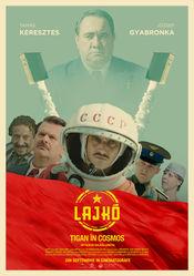 Poster Lajko: Cigány az ürben
