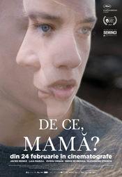 Poster La madre