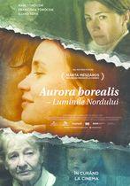 Aurora Borealis - Luminile Nordului