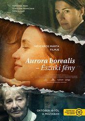 Poster Aurora Borealis: Északi fény