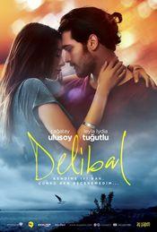 Poster Delibal